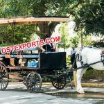 Long Limousine Horse Drawn Carriage