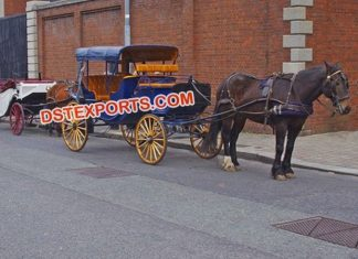 Stylish Victoria Touring Horse Buggy Vehical