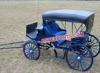Pony Driven Small Carriage Buggy