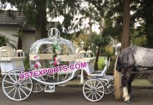 White Cinderella Horse Carriage For Wedding