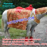 Indian Wedding Decorated Horse Wears