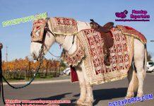 Latest Designed Wedding Horse Costumes Decoration