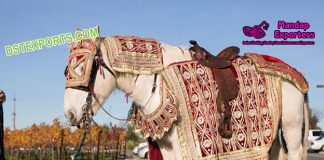 Latest Designed Wedding Horse Costumes Decoration