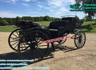 Victorian Style Black Horse Carriage