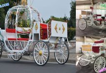 Pumpkin Style Cinderella Horse Drawn Carriage