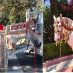 Special Wedding Horse Costume Manufacturer