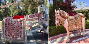 Special Wedding Horse Costume Manufacturer