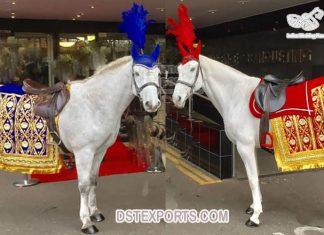 Royal Indian Wedding Horse Costume Decoration